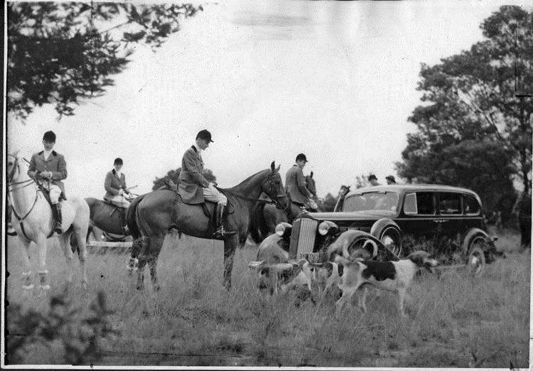 1937 Packard touring sedan, surrounded by men and dogs on a fox hunt